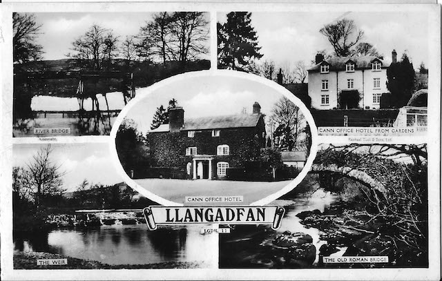 Cann Office Historic Postcard ~1920