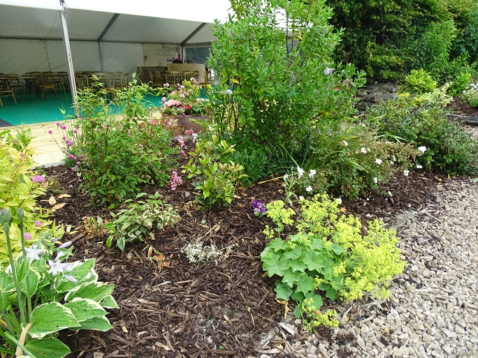 Flower bed by the Marquee