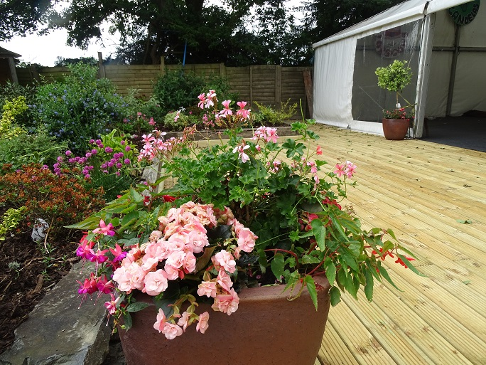 Flower pots on the decking