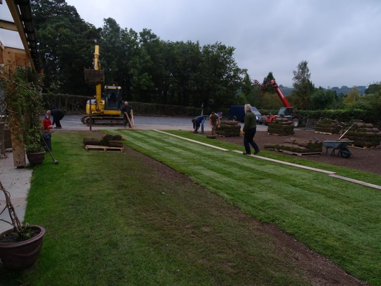 Turfing the lawn